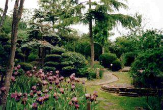 Japanese_garden
