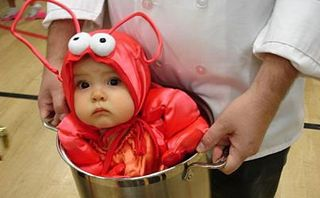 Baby_lobster