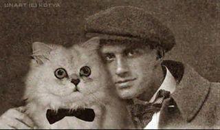 Mayakovsky cat