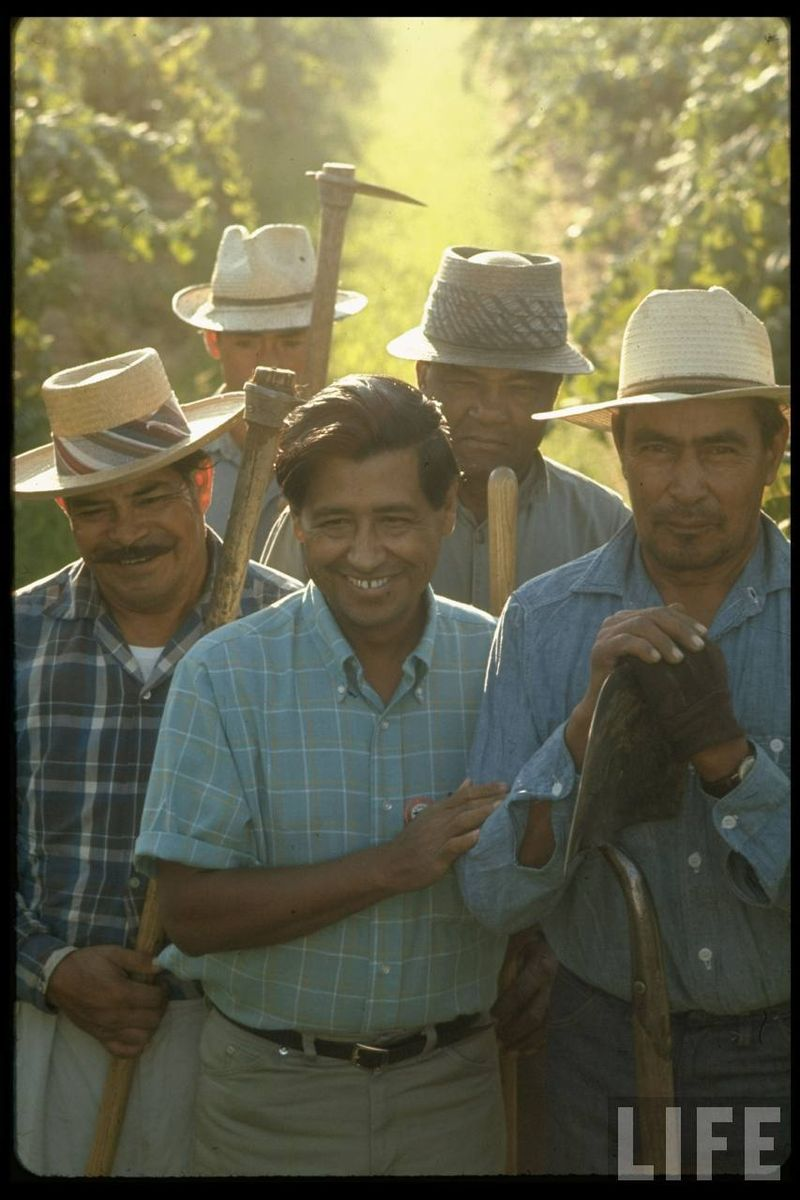 CHAVEZ WITH GRAPE PICKERS