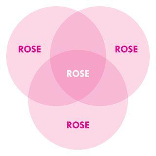 """Rose is a rose is a rose is a rose."" — Gertrude Stein"