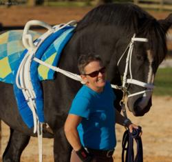 CWPselch horse photo