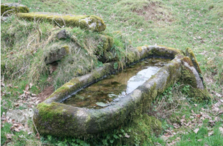 DAY 1 - Water trough