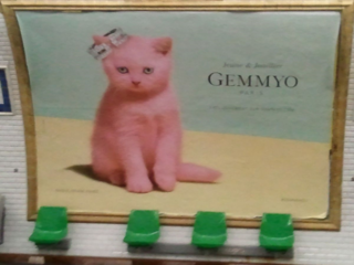 Blurry Pink Kitty