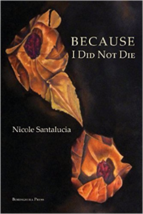 Because I Did Not Die Cover