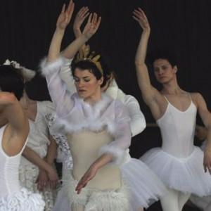 Ballet-lyon-bel-forsythe-brown-puce-300x300