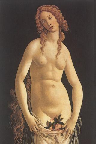 Botticelli-Venus-pudica-1495-Tempera-on-wood-148-x-62-cm-Private-collection-Geneva