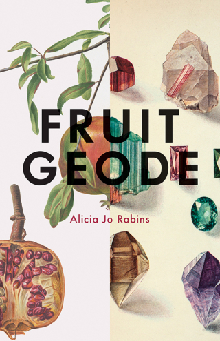 Fruit_geode_cover_rgb_300