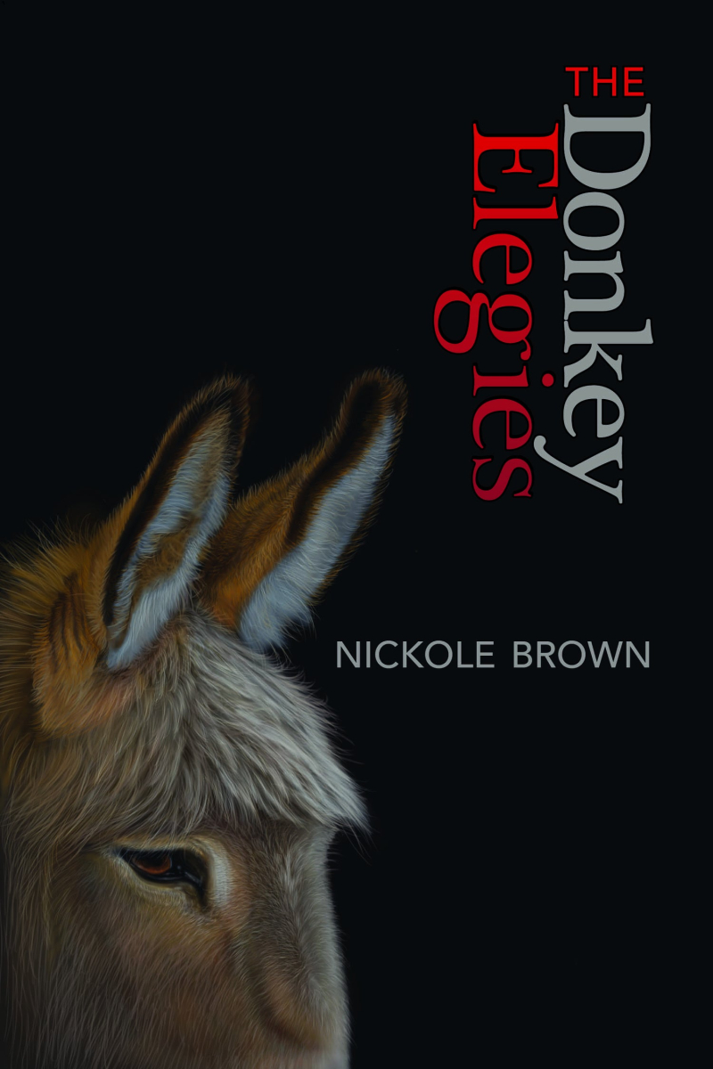 FRONT+COVER+The+Donkey+Elegies