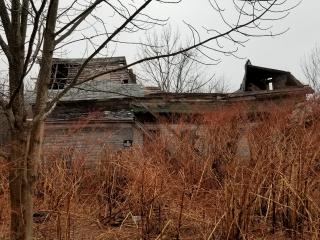 Benson  Cara - dilapidated house